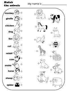 worksheets for preschoolers- matching animals | Match the animals Animal matching