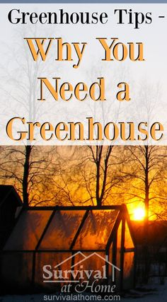 If you've ever wanted fresh herbs and produce in winter, or wanted to start your seedlings early, you already know two reasons why you need a greenhouse.