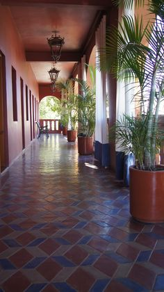 hotel california meeting mexico3