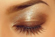 Chocolate brown eye!
