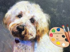 Custom Pet Portraits , Dog Portraits, Labradoodle Dog Oil Portraits on Canvas or as Canvas Prints by PetPortraitsbyNC on Etsy Labradoodle Dog, Goldendoodles, Oil Portrait, Dog Paintings, Painting Process, Dog Portraits, Small Dogs, Colorful Backgrounds, Dog Lovers