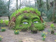 The Lost Gardens of Heligan, Explore Nature, Pentewan, South Cornwall #dogfriendly