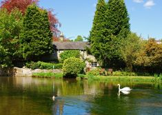 As spring arrives and the Peak is back in leaf, Derbyshire Life journeys to Ashford in the Water – a place full of charm for residents and visitors alike Riverside Cottage, Outside Seating Area, Duke Of Devonshire, Limestone Wall, Family Days Out, Picture Postcards, Peak District, Derbyshire, Journey