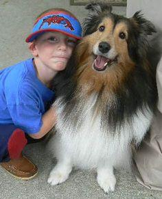 Boy and his faithful Sheltie