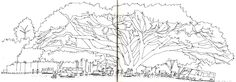 http://www.parkablogs.com/picture/all-sketches-my-cambodia-sketching-trip-2014