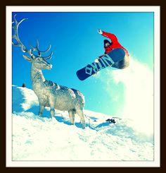 Snowboard Teacher in Sestriere  #italy #sestriere #teacher #snowboard #nitro #sport #sports #active #fun #fit #fitness #instasport #gym #training #workout #excercise #somuchfun #crowd #train #justdoit #health #fitspo #healthy #gameday #win #winner # L1 #snow #exteme #score #best #loveit
