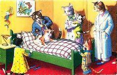 Eugene Hartung Artist Signed Mainzer Dressed Cats Doctor Vintage Postcard