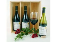 Collection Chateauneuf Chateauneuf Du Pape, Wine Rack, Bottle, Food, Home Decor, Collection, Blackberries, Flasks, Simple