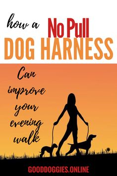 I think we can all agree that nothing ruins a walk with your dog quite like constant leash pulling. You've probably heard of a no pull dog harness, but wondered if they really work. As the proud owner of a 3 time obedience school dropout and chronic leash puller, I can tell you that they …