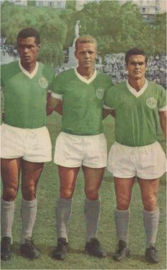 HistóriaDoPalmeiras (@HistoriaSEP) | Twitter PALMEIRAS 1965 #Servílio  #AdemirDaGuia  #Rinaldo