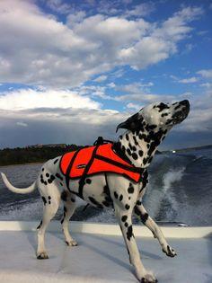 I like to ride on sundeck of my SeaRay OV220