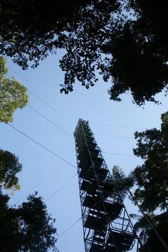 Canopy Tower, Posadas Amazonas - Peru. For my Peru trip reviews visit www.fabeveryday.com