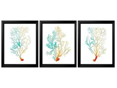 Watercolor Sea Coral Print Set of 3Coral Wall by BeachHouseGallery, $24.00