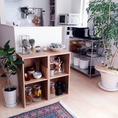 Katsuraさんの、Kitchen,無印良品,野田琺瑯,コーヒー,ケメックス,シルクジャスミン,トルコ絨毯,セラーメイトについての部屋写真