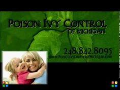 Poison Ivy Removal Company   Birmingham Michigan   Poison Ivy Control of Michigan