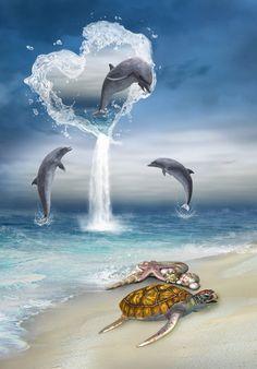 die 17 besten bilder zu delfin malen | delfin malen
