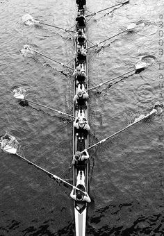 Rowing competition on the Charles River in Cambridge, Massachusetts Black & white classic for a classic sport Row Row Row, Row Row Your Boat, The Row, Rowing Team, Rowing Crew, Remo, Burger Bar, Canoa Kayak, Black White Photos