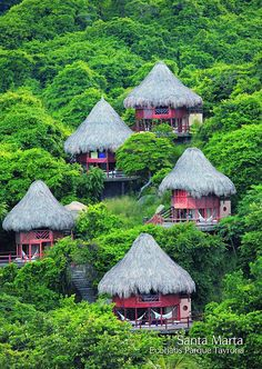 Find more Information and Book your Ecohabs Tayrona National Park Accommodation in Santa Marta, Colombia. Columbia South America, South America Travel, Central America, Places Around The World, Oh The Places You'll Go, Places To Travel, Around The Worlds, Santa Marta, Beautiful World