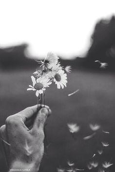 Frühlingsfeeling in #schwarz #weiß