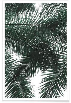 Garden Canopy en Affiche premium par clintonfriedman | JUNIQE