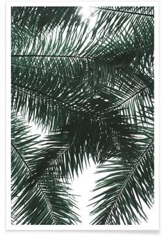 Garden Canopy als Premium Poster von clintonfriedman | JUNIQE