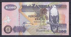 ZAMBİA 100 KWACHA.ÇİLL -