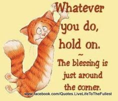 Hold on!!!