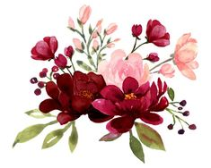 Blush and Burgundy Flowers Watercolor Clipart Collection | Etsy
