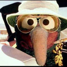 Gonzo as, well, Gonzo Hunter S Thompson