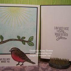 Best Birds Bundle,  Stampin' Up!