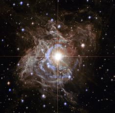 NASA has released a striking photo taken by the NASA/ESA Hubble Space Telescope of RS Puppis, a Cepheid type variable star. The brightest star in the Hubble image, RS Puppis is surrounded by a dazzling reflection nebula. Carl Sagan Cosmos, Images Wallpaper, Hubble Images, Hubble Pictures, Hubble Space Telescope, Nasa Space, Telescope Images, Space Space, Milky Way
