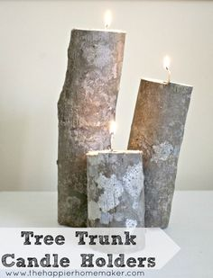 Tree Trunk Votive Holders