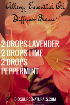 Store As happy as we are when the spring season arrives with flowers blooming, it can also bring exploding sinuses and pollen everywhere. This blend is for those who struggle with allergies, especially in the spring and summer.* Try this blend in your di Essential Oil Diffuser Blends, Doterra Essential Oils, Yl Oils, Young Living Oils, Young Living Essential Oils, Diffuser Recipes, Along The Way, Happy, Spring