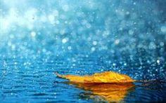 Uyanış Yağmura