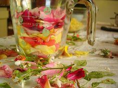 Honeysuckle Rose Jelly