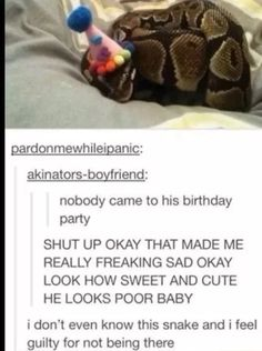Tumbler - I would've gone for the snakes bday! (Though don't think I'd want a piece of his cake..)