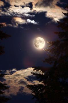 """""""Summer Nights"""" by Virginia Bailey Photography on Flickr - The photographer stated that the full moon is just so magical some how. Also, summer nights are wondeful! This photo was taken on June 23, 2010."""