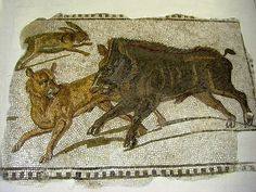 Roman Mosaic. Hare and Boar. Tunis. Tunisia.