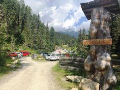 Parkplatz Seichenbrunn im Debanttal, Osttirol, Nationalpark Hohe Tauern Country Roads, Parking Space, National Forest