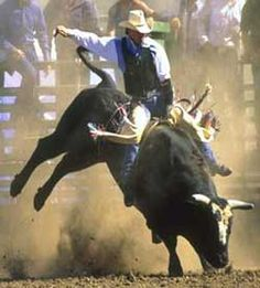 Bull Riding- to go to the Nationals to watch!