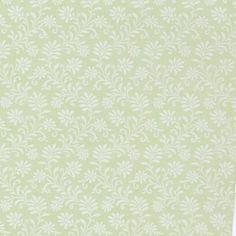 Moss Green Ferns/3