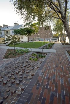 Balfour Street Pocket Park by Jane Irwin Landscape Architects. The planted brick swale introduces a locally scaled stormwater management system, with protruding bricks to capture rubbish and slow water flow. G E N I U S