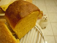 pumpkin loaf bread