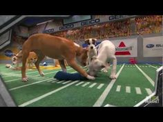We ♥ Pets Blog - Forget the Super Bowl, watch the PUPPY BOWL!