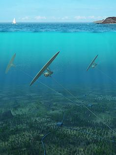 seawater is 800 times as dense as air, the small turbine attached to the kite — which is tethered to the ocean floor — can generate 800 times more energy than if it were in the sky