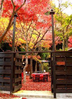 Cafe in Kobe, Japan