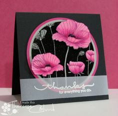Hero Arts Poppy Background Thanks card - pink and black - colors and layout - vellum sentiment - bjl Hero Arts Cards, Poppy Cards, Copics, Flower Cards, Flower Stamp, Creative Cards, Greeting Cards Handmade, Stampin Up Cards, Altenew Cards