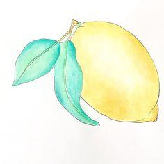 When life gives you lemons... grab a bottle of vodka. 🍋🍋🍋