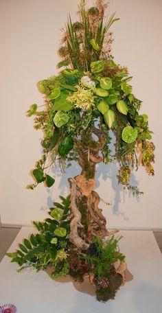 """Wafa Ireland """"A floral Odyssey"""""""