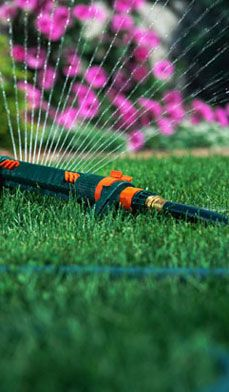 Lawn-Care Secrets - Meredith Kirton, author of Dig: Gardening from the Ground Up (Barnes & Noble Books, 2003) reveals her secrets to a lush summer lawn.